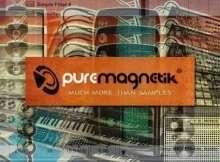 puremagnetik_review