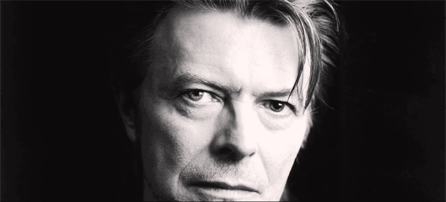 bowie-small